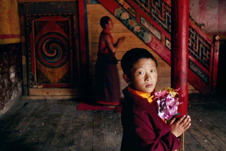 View image only Steve McCurry TIBET. Kham. Larung Gar. 1999. Young monk holding flowers to be offered in prayer at the academy.