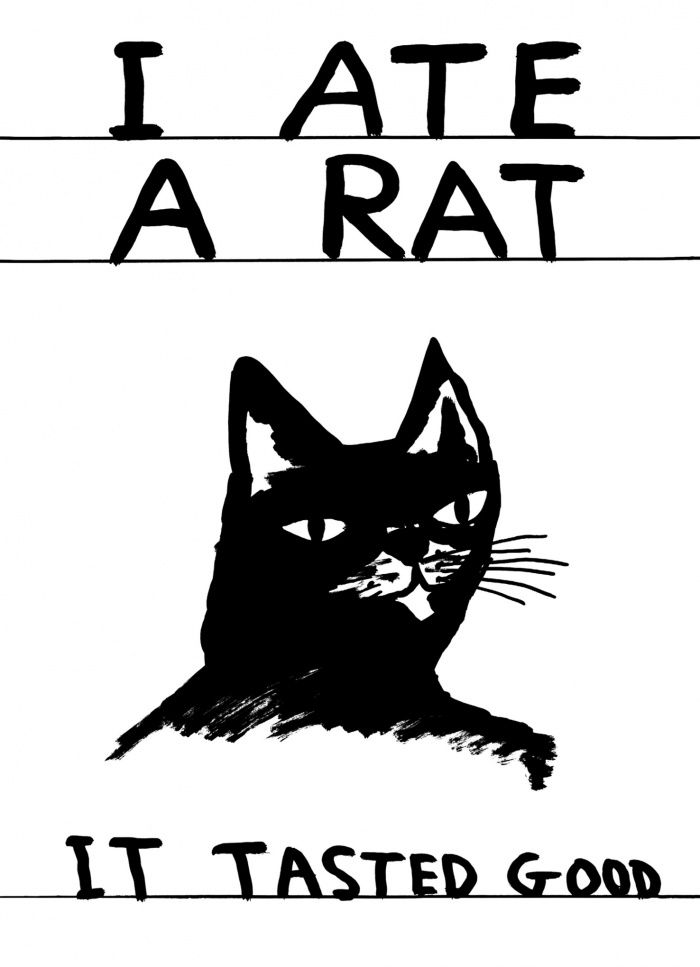 David Shrigley is a British Visual Artist living and working in Glasgow.   He is…