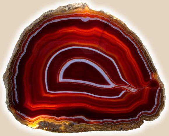 Agate: Beautiful Natural, Gemstone Minerals, Beautiful Rocks, Beautiful Stones, Rocks Collection, Agates Slices, Crystals Minerals Ston, Red Agates, Gems Minerals Fossil