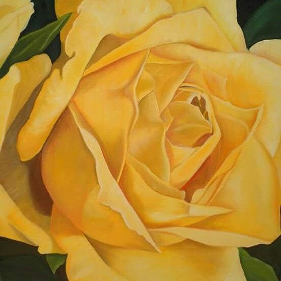 Golden anniversary rose painting by Tracey Hall
