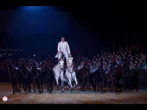LORENZO INTERNATIONAL HORSE SHOW HD