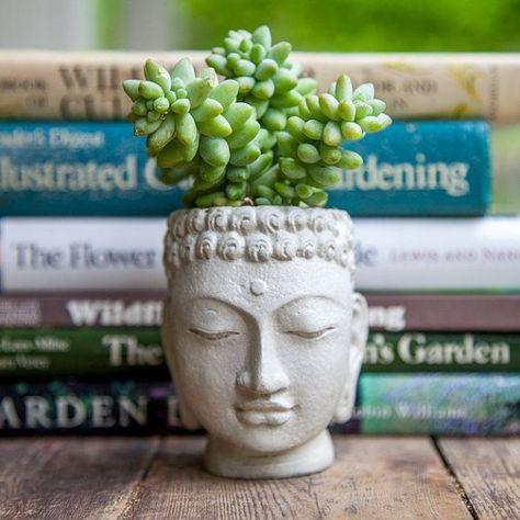 Buddha Kopf Pflanzer kleine Zement Pot Buddha von brooklynglobal, $30.00