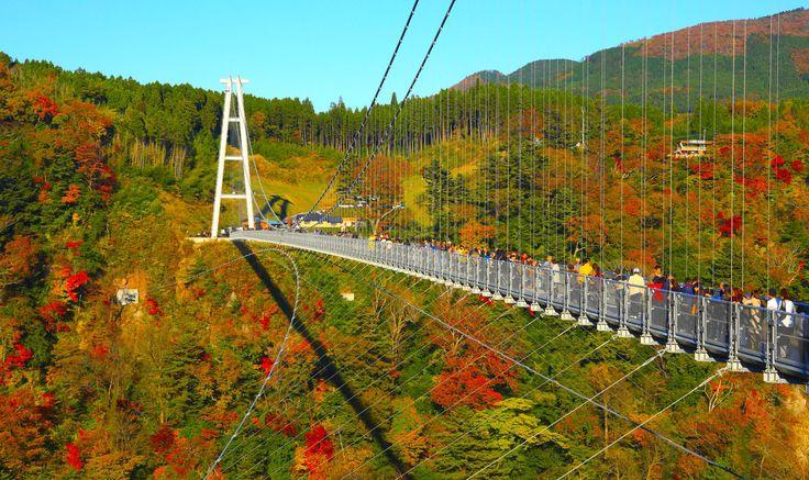 想像以上のスケール!日本一の吊り橋「九重夢大吊橋」で空中散歩してみたい! - Find Travel