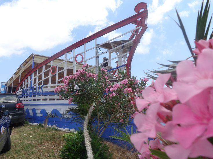 restaurant kefalonia, best restaurant, nautilus - Fish Tavern Nautilus