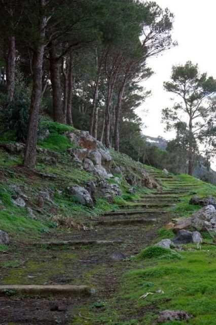 Ustica Trekking und Archeo - Aktivurlaub!!!  Trekking und Archeo Pfade zu Ustica der Naturschutzgebiet und die mediterrane Vegetation zu entdecken, sondern auch die Geschichte und Archäologie! #sizilien #ustica #UsticaInsel #Meeresschutzgebiet #urlaub #Entspannung #unaltrasicilia #ökotourismus #ökotour #Aktivurlaub #trekking #reisen