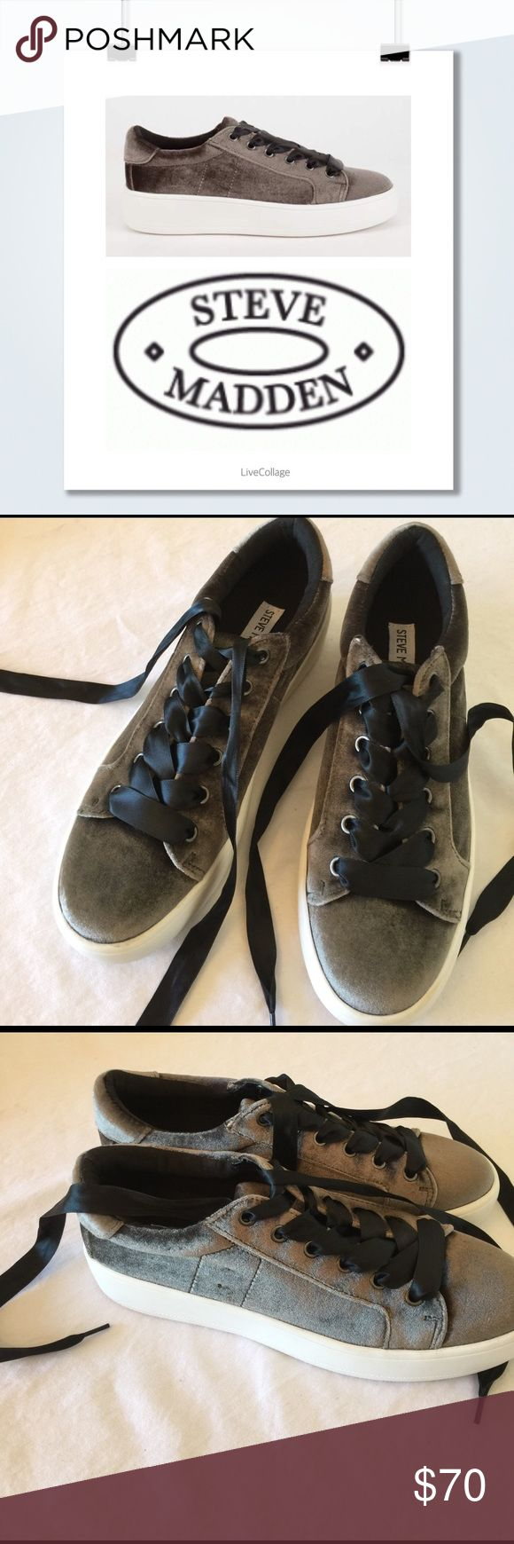 Steve madden, bertie sneaker, 8m Awesome ribbon detail, on these steve madden, bertie sneakers, size 8m, store sample, never worn outdoors, 🚫no trades. Steve Madden Shoes Sneakers