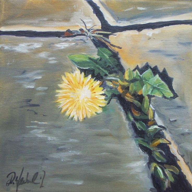 Löwenzahn, Oil on canvas, 20x20 cm
