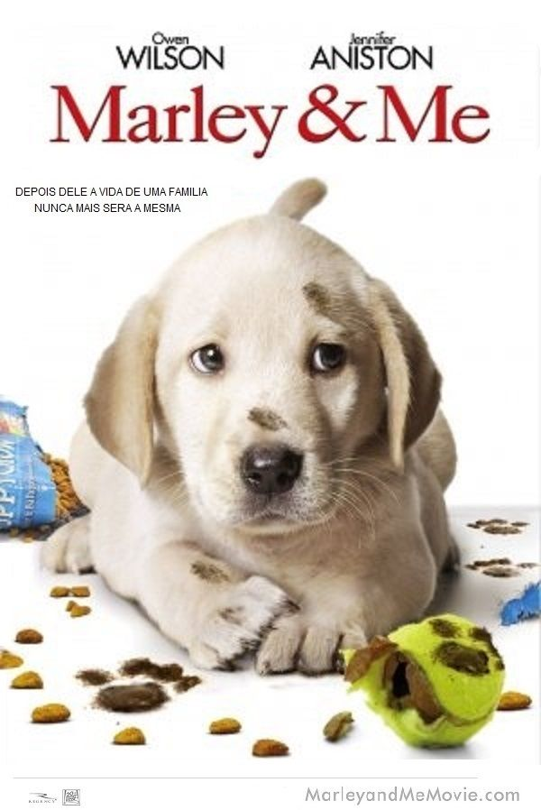Marley Me 2008 Marley And Me Labrador Retriever About Time Movie