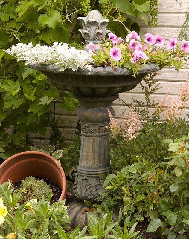 ooh, don't rule out a bird bath due to stale water and mosquitos...just use it to plant more flowers in it :)