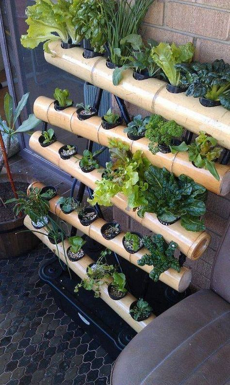 Gardening : How to Build a Hydroponic Garden #InterestingThings ...