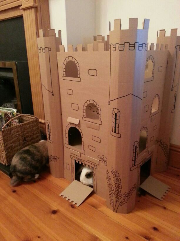 25 best ideas about cat castle on pinterest cat play for Castle made out of cardboard