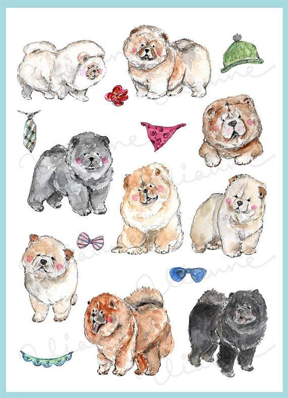 Clip Art Watercolor Chow Chow Set 16 Images Digital Download