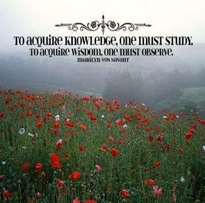 Marilyn vos Savant #Knowledge, #Observe
