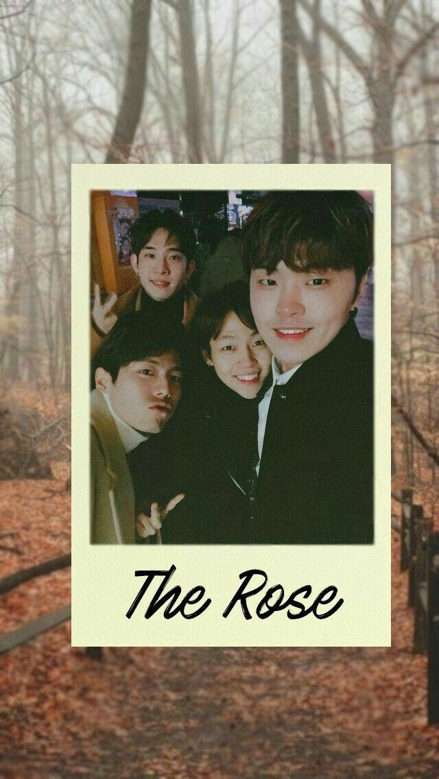 Pin By Iguccihitae On The Rose In 2019 Rose Wallpaper