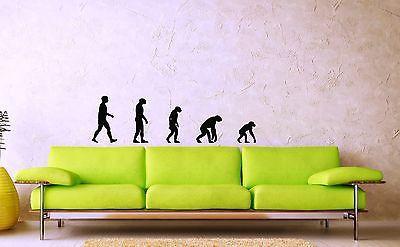Wall Stickers Vinyl Decal Evolution Darwin Theory Joke ig1469