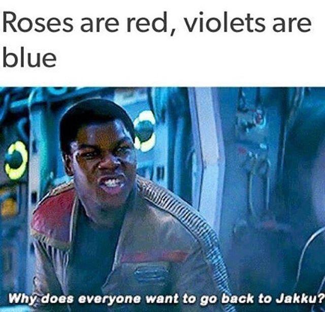 Finn the poet