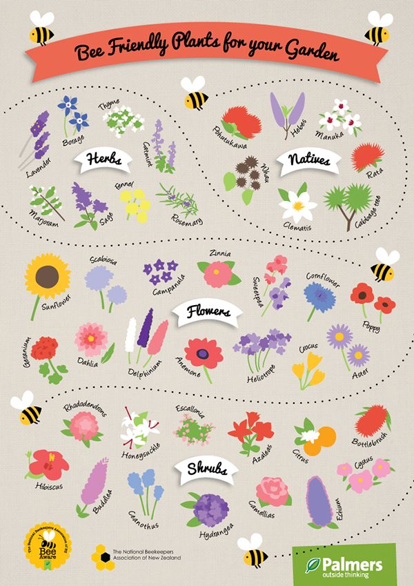 Bee Friendly Plants Poster
