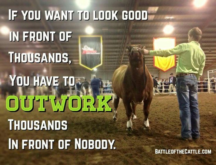 This applies to showing cattle and life in general!