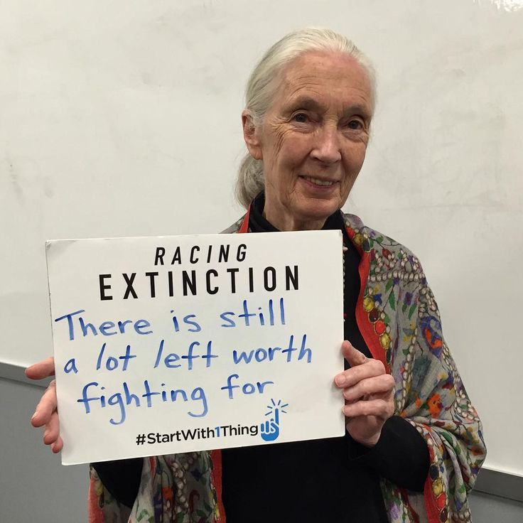 """""""""""There is still a lot left worth fighting for."""" - Dr. Jane Goodall"""