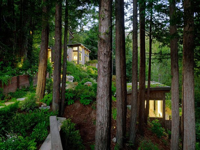 Weekend Cabin: Mill Valley, California