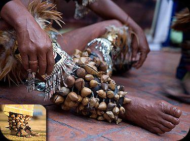 Esta página esta dedicada a ilustrar y dar información acerca de los Atuendos, trajes tipicos y regionales de Mexico, Descripcion del vestuario de las diferentes danzas en Mexico. Pretendemos enten…