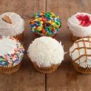 Cupcakes - Crumbs Bake Shop -  Cupcake For Wedding, Chocolate Cupcake, Cupcake Delivery