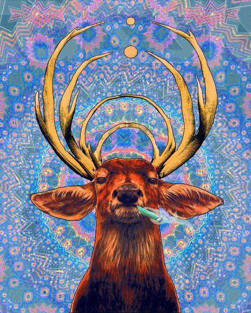 Best 20+ Psychedelic Wallpaper Hd ideas on Pinterest