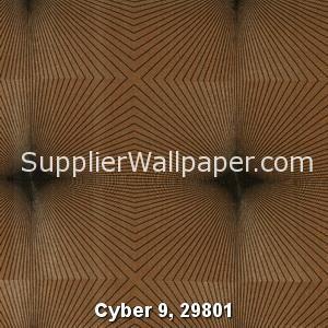 Cyber 9, 29801