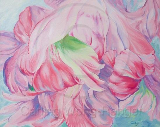 April Parrot Tulip    by Carling Wong-Renger