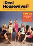 Real Housewives of Orange County: Season 6 [4 Discs] [DVD]