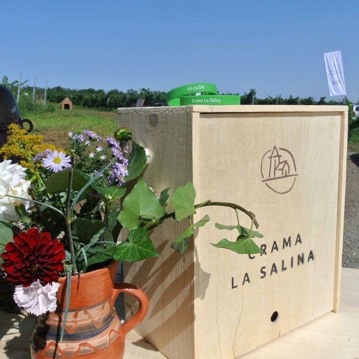 Crama La Salina in Turda http://winesylvania.com/wineries/2015/9/20/crama-la-salina