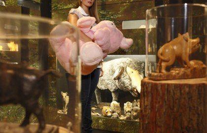 Frau mit Kuschelschwein im Schweinemuseum Stuttgart