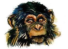 Afbeeldingsresultaat voor afbeeldingen schilderijen aap