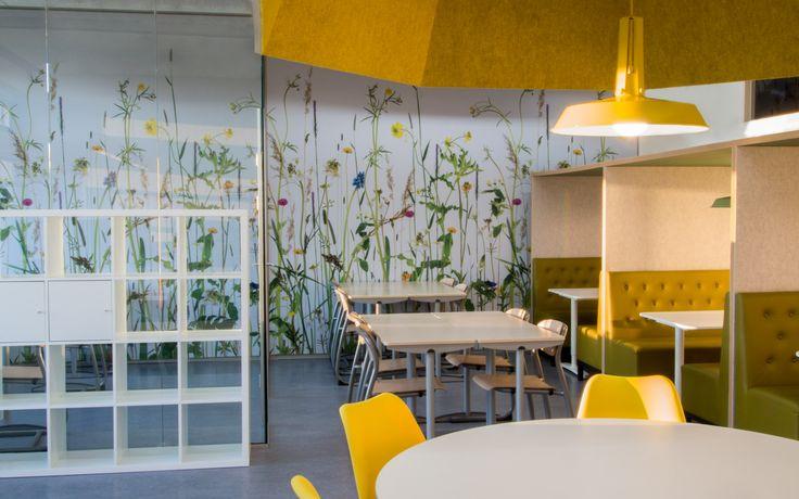 ontwerp en realisatie van 3 open leercentra's