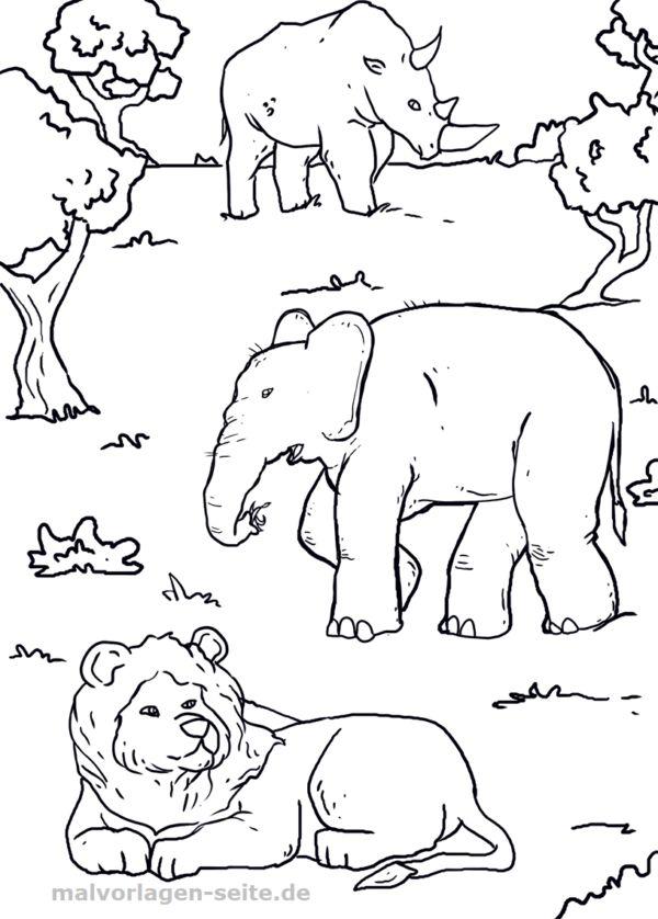 die besten 25 ausmalbilder tiere ideen auf pinterest
