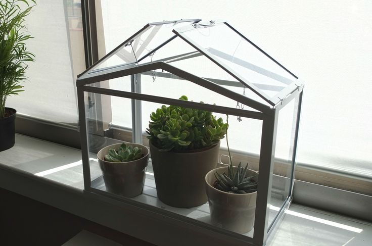 Cultivate your own mini garden in the SOCKER greenhouse! Great for houseplants, or maybe your own herb garden.