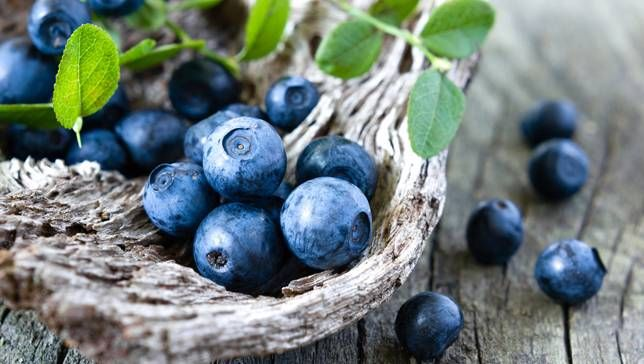 We all know blueberries are healthy. But you may be surprised at just how healthy they actually are!