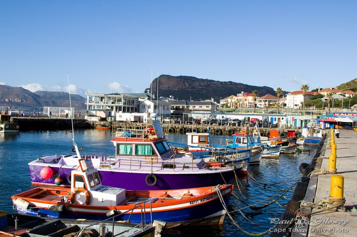 Colourful boats in the harbour