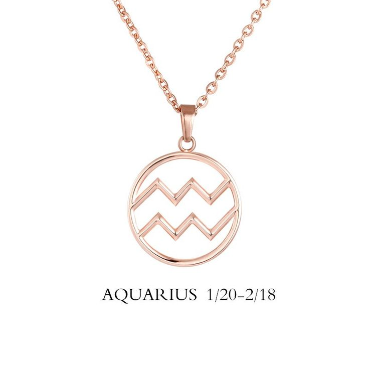http://zodiactrends.com/products/aquarius-sign-necklace