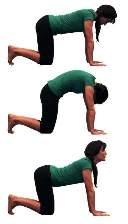 60 best * Yoga benefits * images on Pinterest   Exercises ...