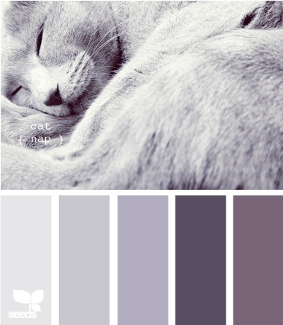 colors for bedroom with darker gray walls and last purple?