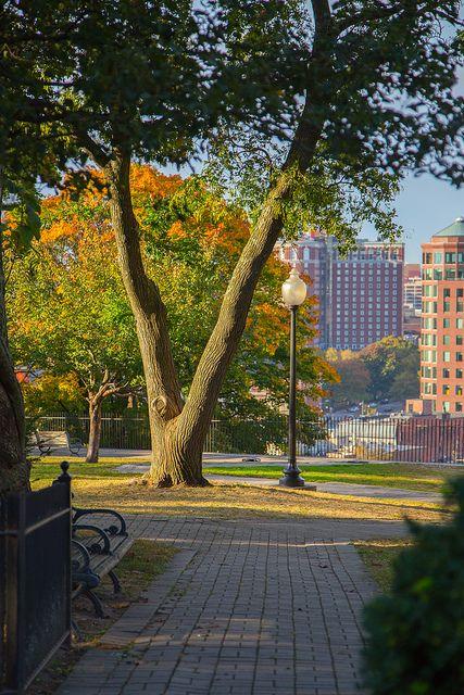 Fall in Providence       #VisitRhodeIsland