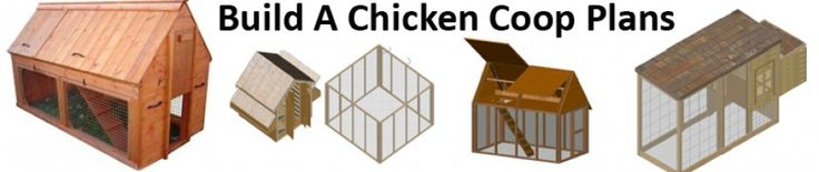 Build a chicken coop with these awesome chicken coop plans for less money than you thought and raise healthy chickens. >> chicken coop plans --> http://buildingachickencoopplans.com/