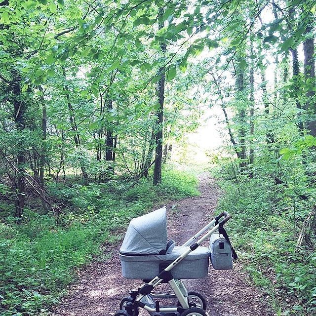 Unterwegs im Wald/Out and about in the forest Thanks to @duniavanderhren #abcdesign #abcdesign_viper4 #viper4 #thinkbaby #stroller #kinderwagen #changingbag #pram #instagood #forest #outside #nature #sunny #sunshine #sweet #little #kids #mother #mommy #mom #motherlove #photooftheday #babyphotooftheday