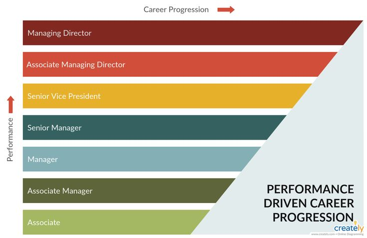 Career Path Example