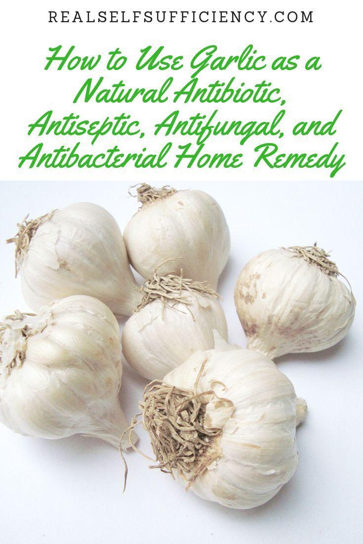 How to Use Garlic as a Natural Antibiotic, Antiseptic
