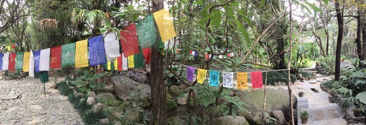A very special place called Norbulingka, Nr Dharamsala.