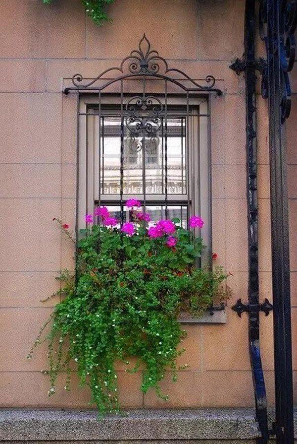Burglar Bars Window Security Wrought Iron Window Window Box Flowers Window Box Garden Window Bars