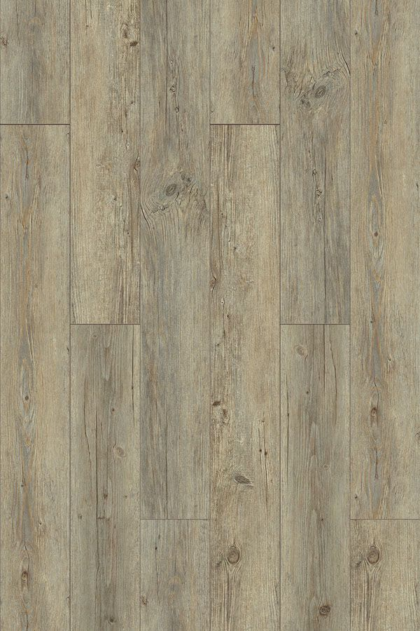Pellston Plank From The Homecrest Mission Point Collection Pet Proof Flooring Mission