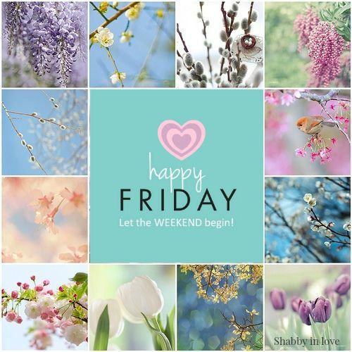 good morning friday/ Beautiful thank you A.L. ~